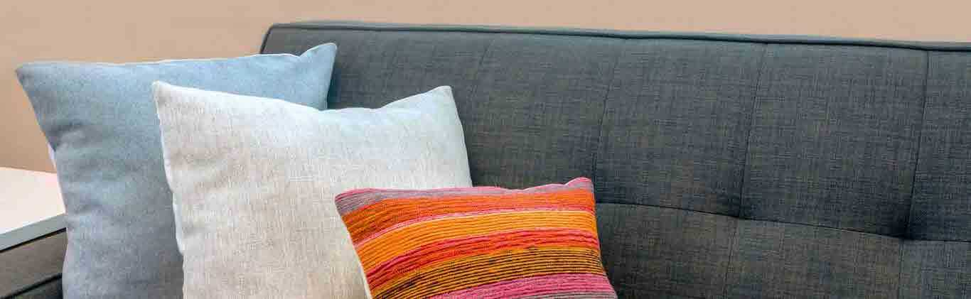 sofa sanitization services